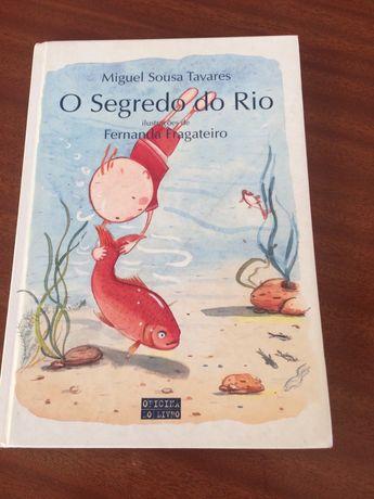"""Livro """" O Segredo do Rio"""