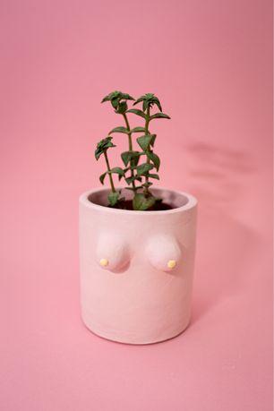 Горщик для рослин ( горшок, кашпо для рослин )