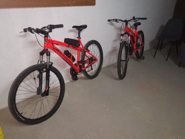 Duas bicicletas de adulto