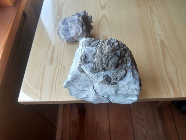 Kamienie akwarium