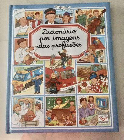Dicionario de Profissoes - Novo