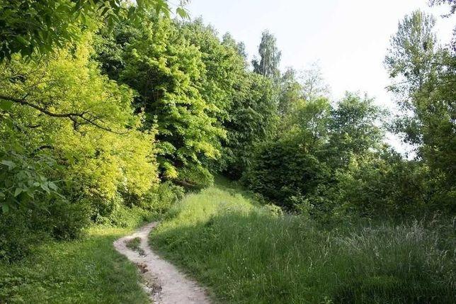 Шевченківський гай, земля під забудову, Личаківський район