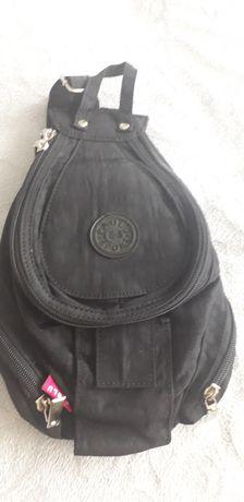 Plecaczek czarny mały