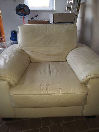 Fotel skórzany firmy Gala