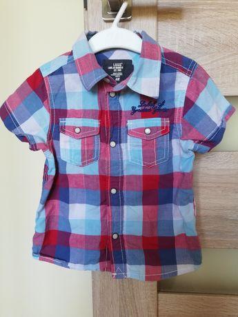 Koszula chłopięca H&M