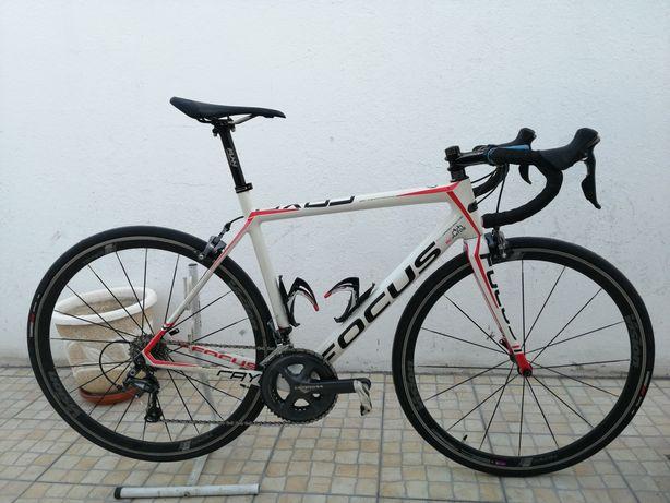 Bicicleta estrada Focus cayo