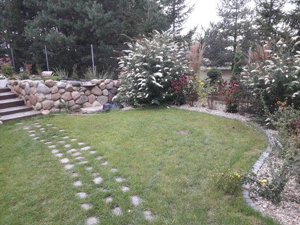 Zakładanie i Pielęgnacja Ogrodów modernizacja