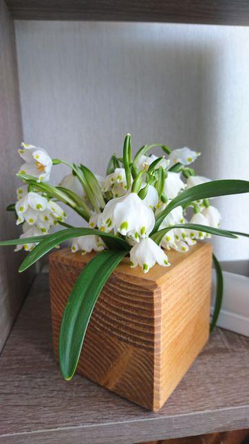 Кашпо горщик дерев'яний для кактусів, сукулентів