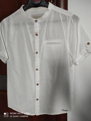Koszula ZARA roz.128 ( size8)