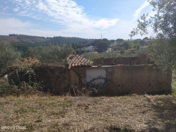 Terreno para construção com 3.400m2 a cerca de 5km da cidade de Tomar