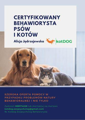 Behawiorysta kotów i psów zoopsycholog