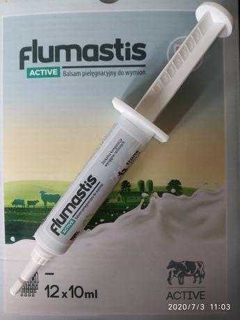 Flumastis active, maść na zapalenie wymion bez karencji