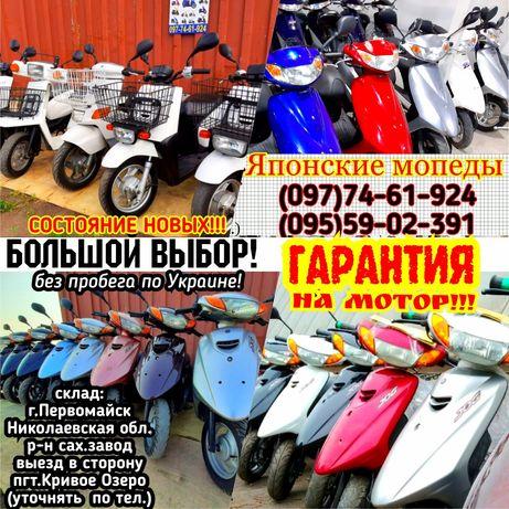 Скутер хонда tact16 без пробега по Украине с контейнера!Выбор:dio,gear