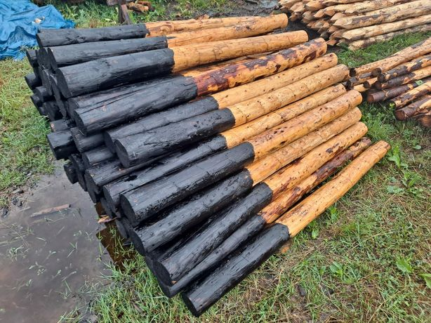 Słupki ogrodzeniowe drewniane stemple budowlane paliki kołki iglaste