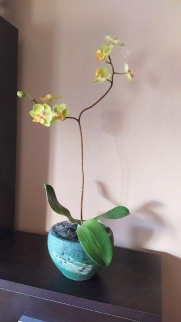 Vaso com orquídea