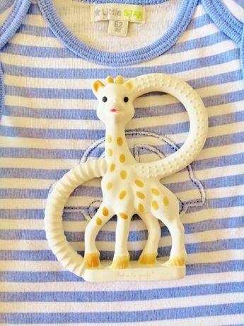 Gryzak Żyrafa, Żyrafka Sophie VULLI + LITTLE STAR Body na lato rozm.62