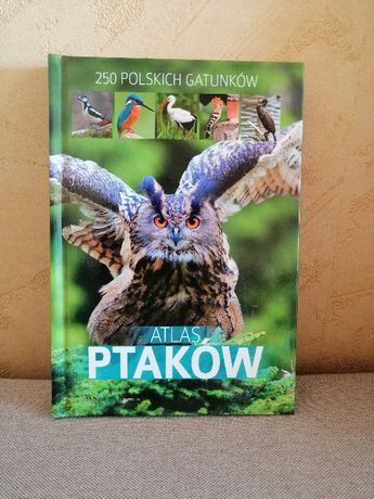Marchowski Dominik - Atlas ptaków
