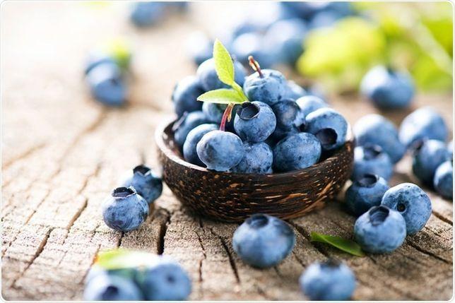 Owoce borówki amerykańskiej borówka amerykańska