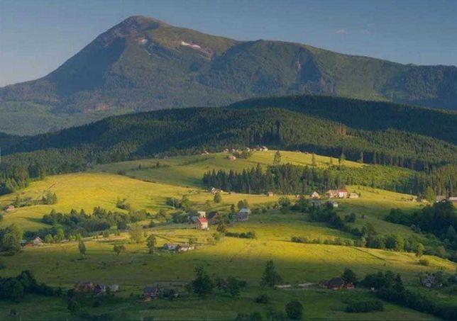 Земельна ділянка ОСГ Карпати с. Лазещина Закарпатська обл