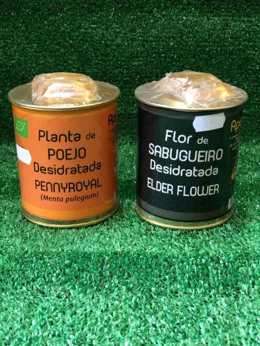 Plantas de Poejo e Flor de Sabugeiro