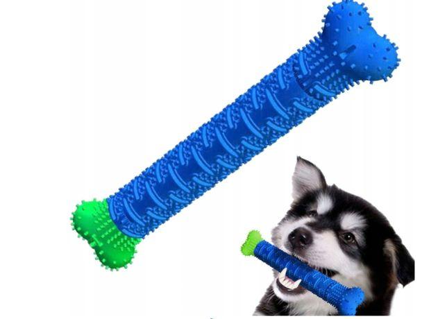 Gryzak dentystyczny szczotka do zębów zabawka dla psa