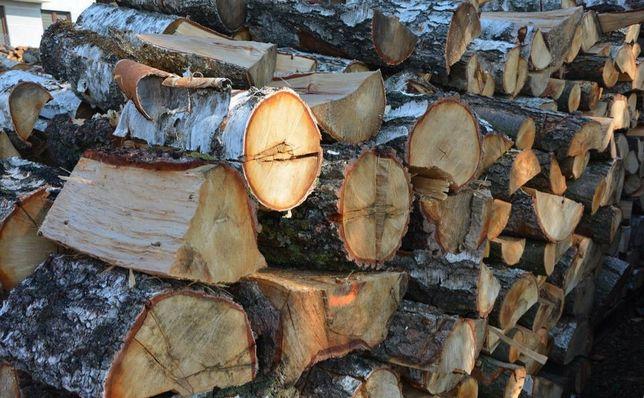 Barlinek - drewno kominkowe - wiele gatunków!!