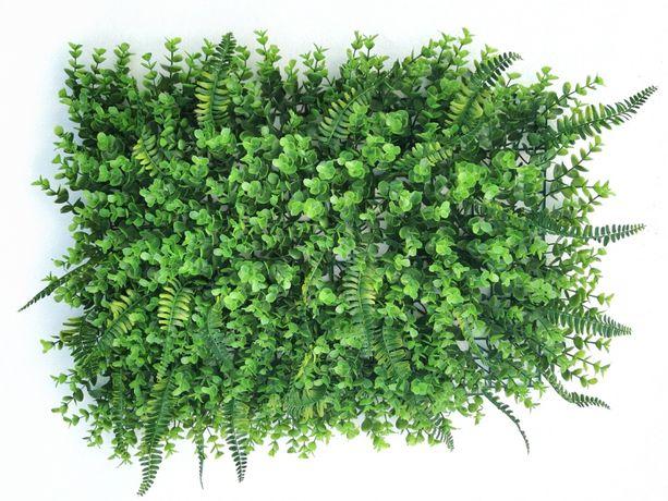 Фитопанели для фитостен (декоравные растения) - декоративная фитостена