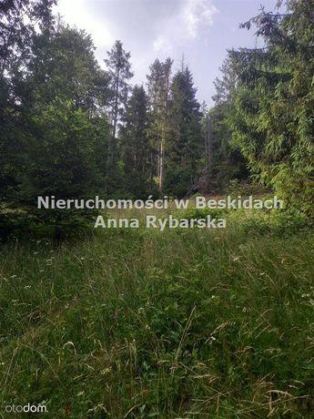 Atrakcyjna działka leśna na Magurze .