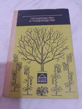Овощеводство и плодоводство.