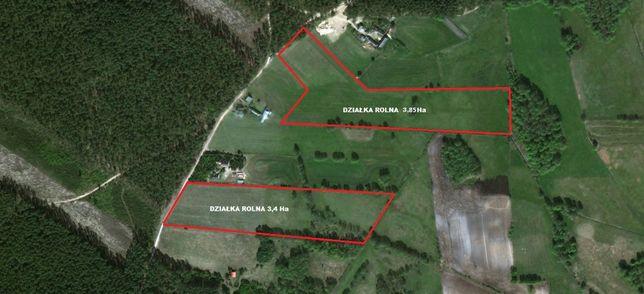 Sprzedam 7.25 ha ziemi Tabory-Rzym(Pianki) gm. Zbójna