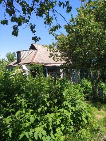 Продам будинок із землею у Кагарлицькому районі село Іванівка