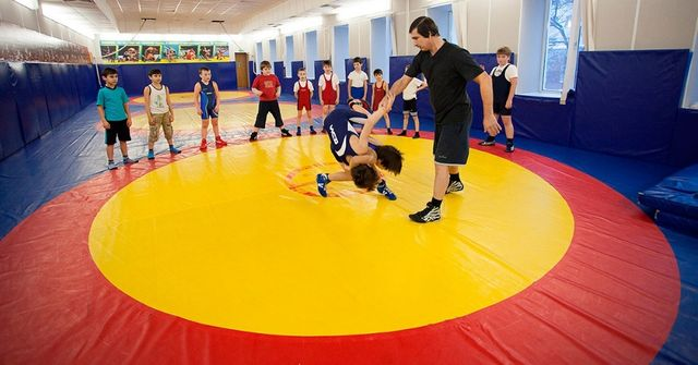 Борцовский ковер для дзюдо/борьбы/школ. Спортивные маты татами-пазл