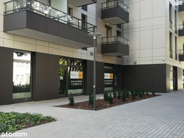 Lokal przy Pl. Bankowym 234 m2, nowy budynek