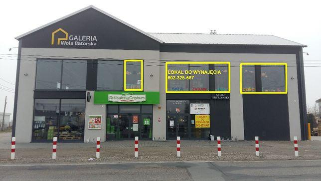 Lokal Wola Batorska / NIEPOŁOMICE 110 mkw.