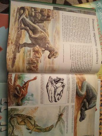 Dla fanów DINOZAURÓW książki, także 3D