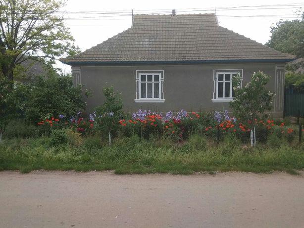 Продам дом ,один двор ,два дома, с.Плахтеевка,мира 147 ,центр села