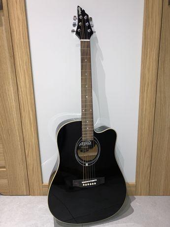 Gitara akustyczna Flycat