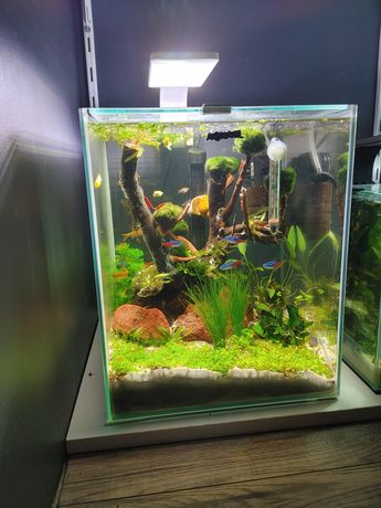 Kompletne akwarium 30 l