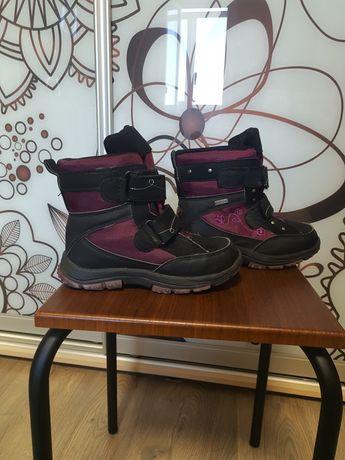Термо ботинки Фламинго