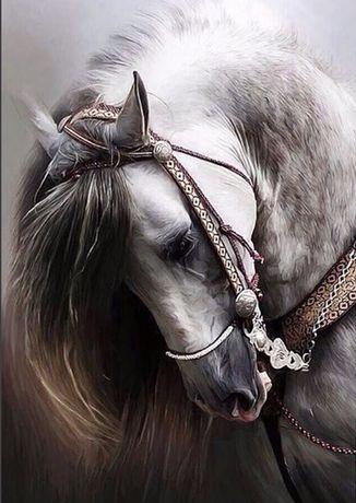 Haft wyklejany kon konie 50x40 diamond painting