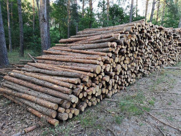 Słupki ogrodzeniowe drewniane budowlane stemple