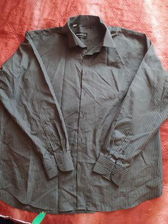 Рубашки и тенниски (батал)