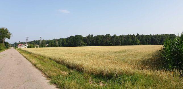 ziemia rolna Skórzec 5ha