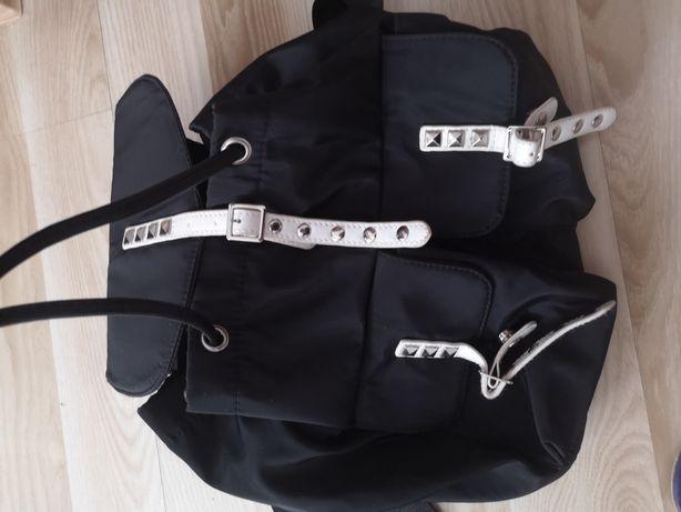 Plecaczek czarny