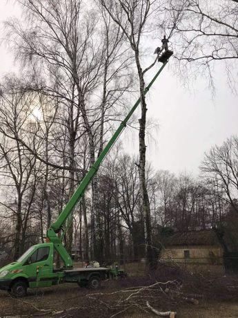 Wycinka drzew Warszawa i okolice, czyszczenie działek, rębak do gałęzi