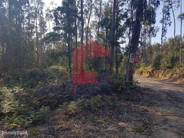 Terreno em Floresta de produção em Atiães, Vila Verde