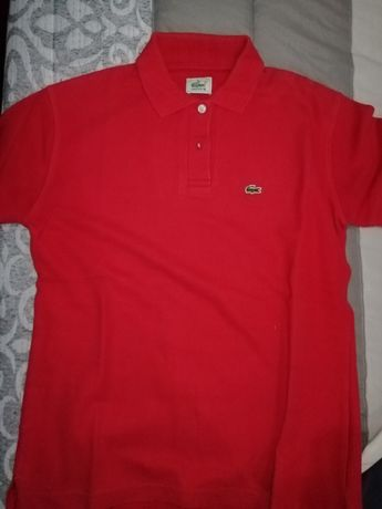 Polo Lacoste, Tommy Hilfiger
