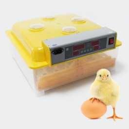 Chocadeira 48 ovos automática-NOVA