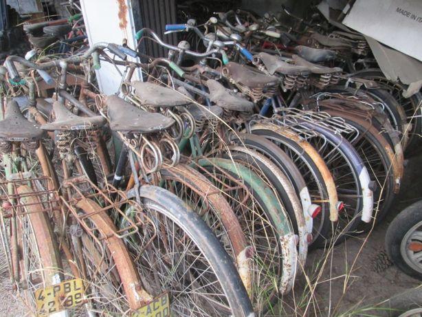 Bicicletas Pasteleira, Corrida, Criança