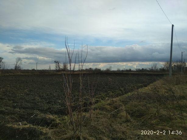 Приватизована земельна ділянка під індивідуальну забудову